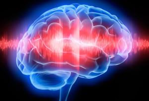 mozg2 300x205 Влияние медитации на мозг