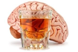 alkogol i mozg 300x199 Вся правда об алкоголе