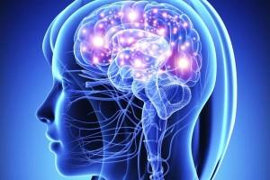 nervnayasistema 300x200 Дисфункції вегетативної нервової системи